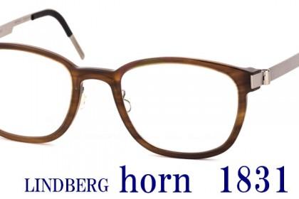 horn 1831