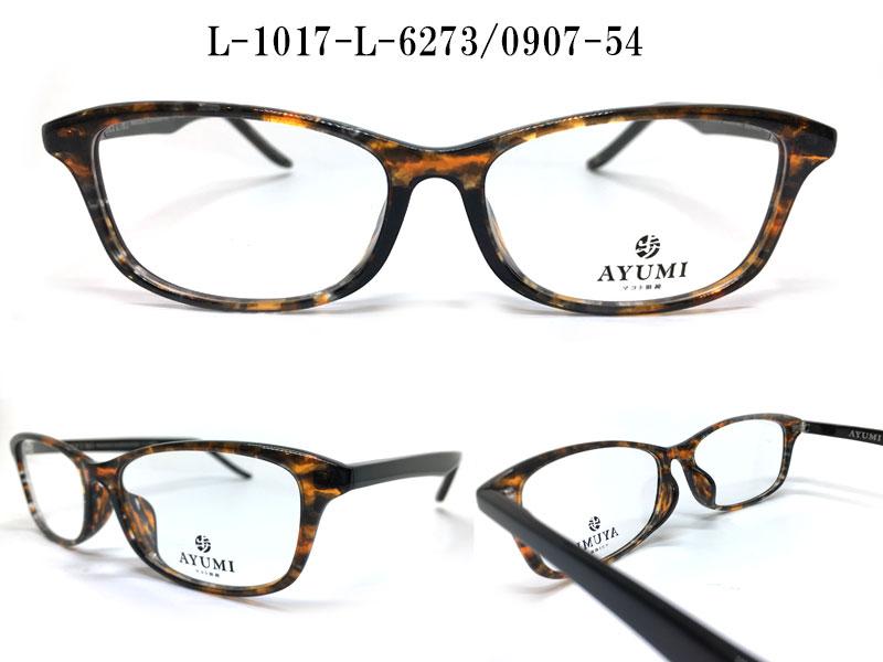 L-1017-L-6273-0907-54
