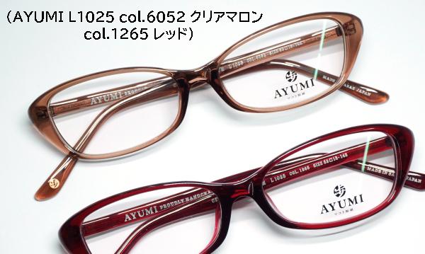DSC05206s